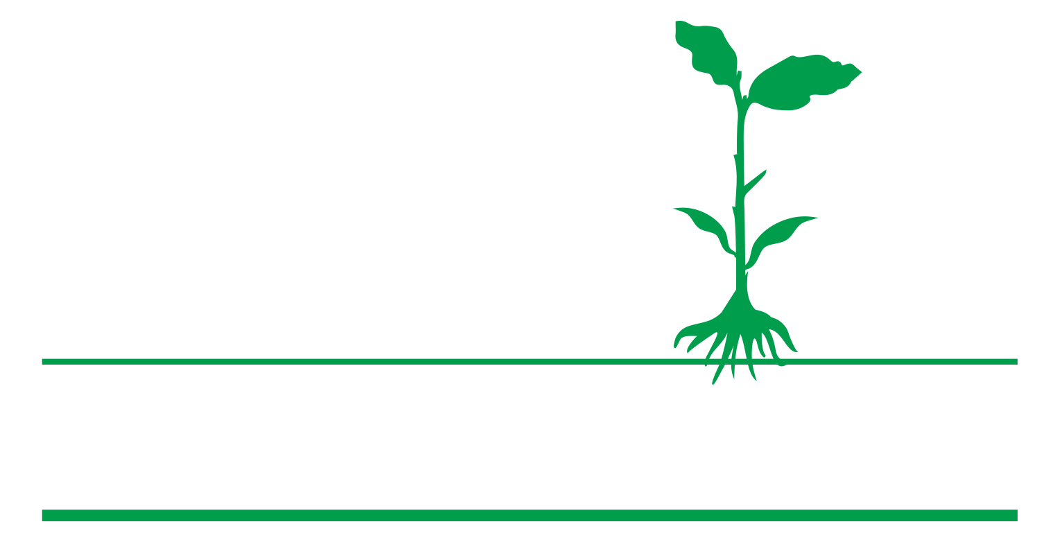 Waterford Second St School Logo
